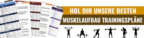schneller Muskelaufbau Trainingsplan