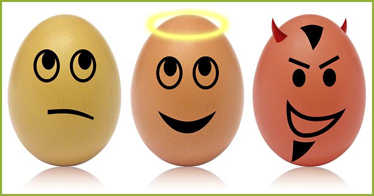 Eier-gesund