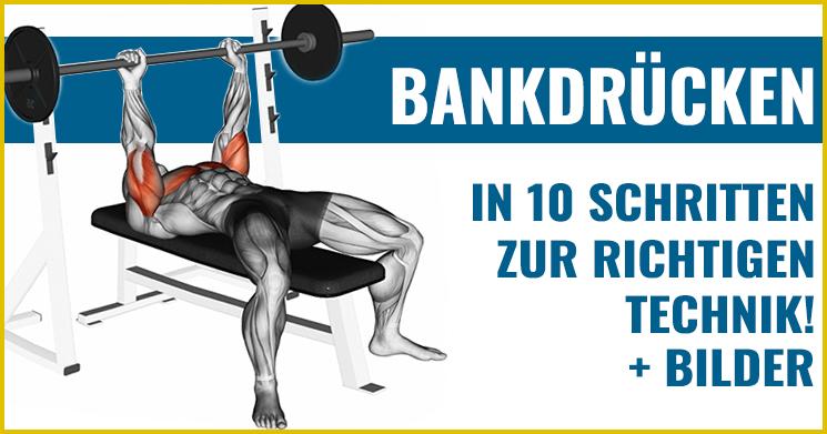 Brusttraining Bankdrücken