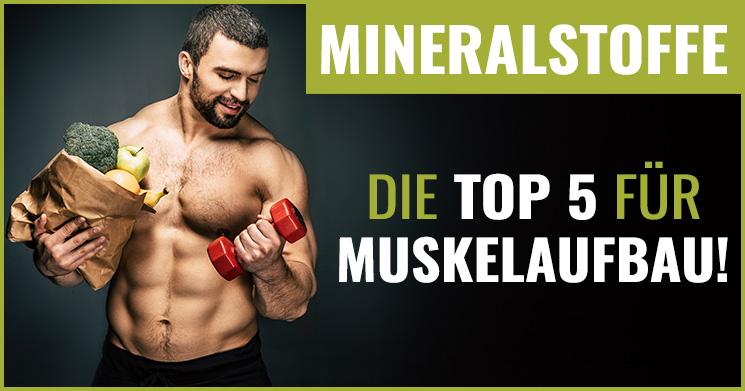 Mineralstoffe Muskelaufbau