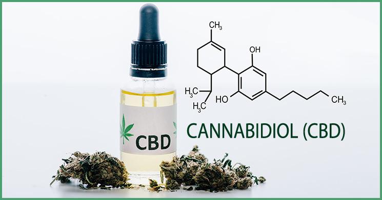 CBD-Öl Wirkung